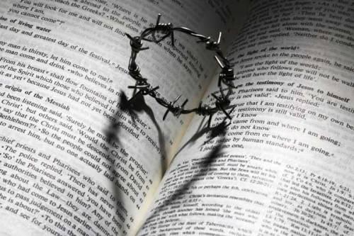blesed-assurance