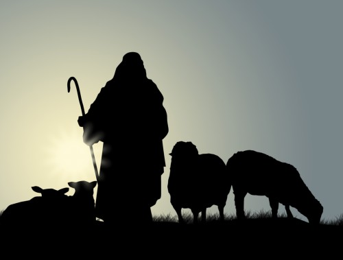 shepherd-and-sheep-e1446124496929