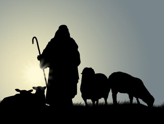 shepherd-and-sheep-e1446124496929