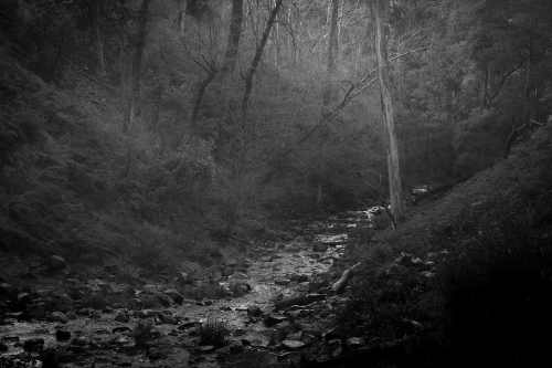 australia-trentham-trentham-falls-moody